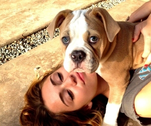 diva, miley cyrus, and dog image
