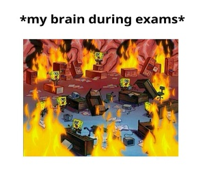 cool, exams, and school image
