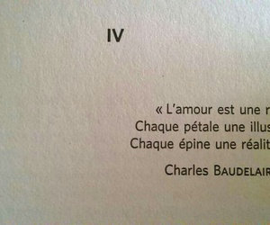 quotes, amour, and love image