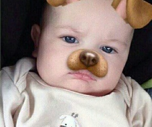 baby, louis, and dog image