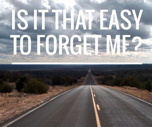cimorelli and easy to forget me image