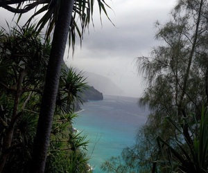 nature, beach, and Island image