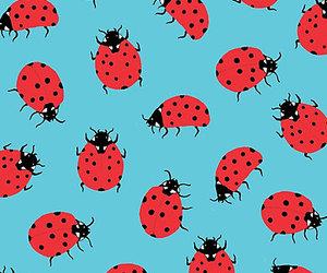 ladybug, background, and pattern image