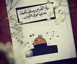 فلسطين image