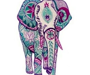 elephant, animal, and colors image