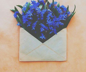 flowers, blue, and Letter image
