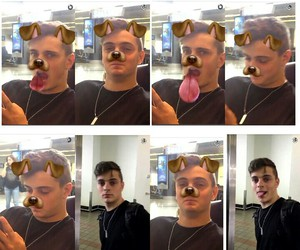 dog, martin, and faces image