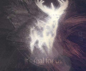 harry potter, patronus, and real image