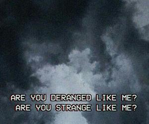 halsey, strange, and tumblr image