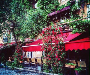 armenia, cafe, and green image