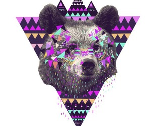 bear, hipster, and animal image