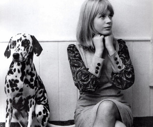 black and white, dalmatian, and marianne faithfull image