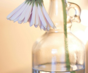 bottle, home, and pastel image