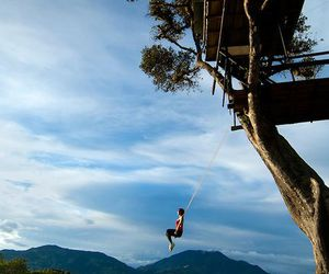 amazing, ecuador, and swing image