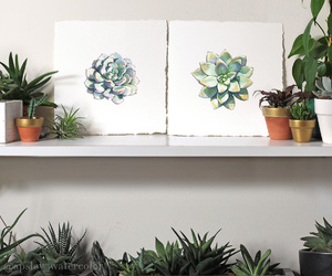 art, plants, and succulents image