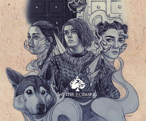 art, a song of ice and fire, and arya stark image