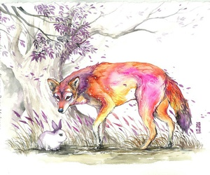 art, coyote, and fox image