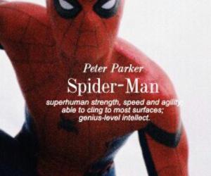 civil war, spider, and spider man image