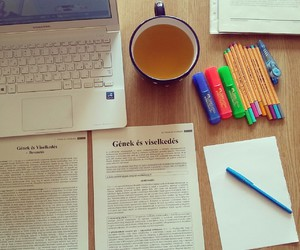 study, book, and exam image