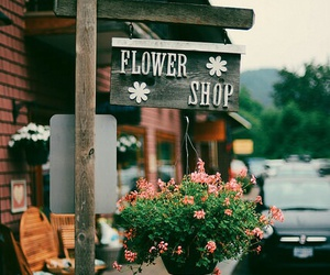 flowers, shop, and vintage image