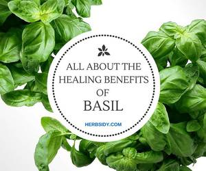 health and herbs image