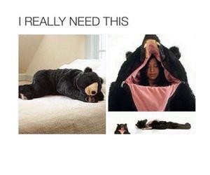 bear, funny, and sleep image