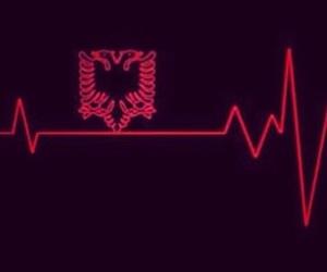 albanian, albania, and flag image
