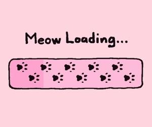 cat, pink, and kawaii image