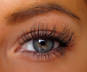 brown, eye lashes, and girls image