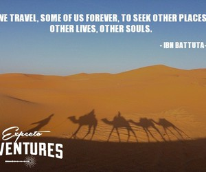 forever, quote, and travel image