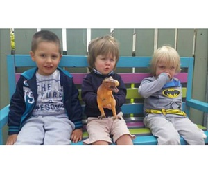 baby, boys, and liam payne image