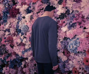 flowers, pink, and boy image