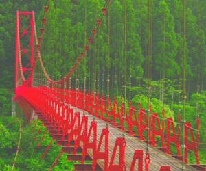 bridge, red, and nature image