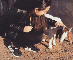 baby, cuddle, and goat image