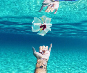 flowers, summer, and ocean image