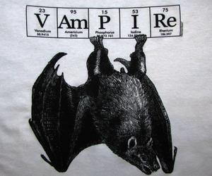 vampire, bat, and gothic image