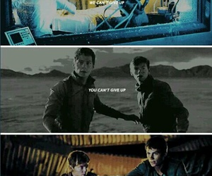 thomas, newt, and the maze runner image