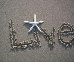 beach, live, and summer image