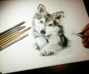 art, dog, and draw image