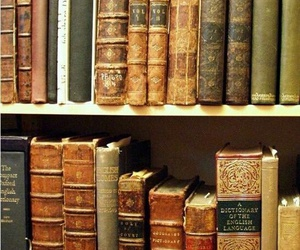 books, reading, and bookworm image