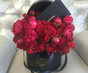 love, flowers, and roses image