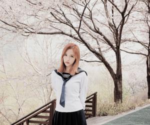 mina, twice, and kpop image