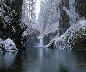 beautiful place, fog, and snow image