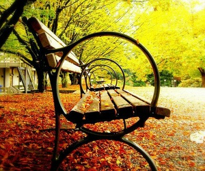 chairs, park, and nature image