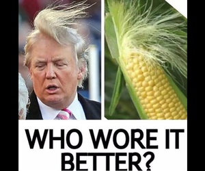 funny, corn, and lol image