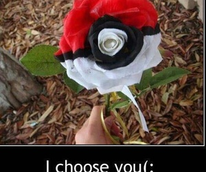 pokemon, rose, and flowers image