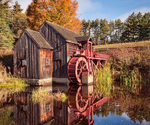 autumn and usa image