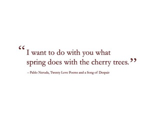 quotes, spring, and love image