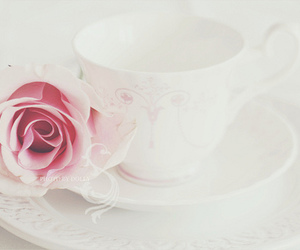 rose, cup, and pastel image