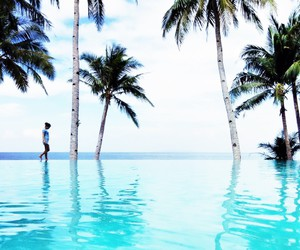 coconut, infinity pool, and trees image